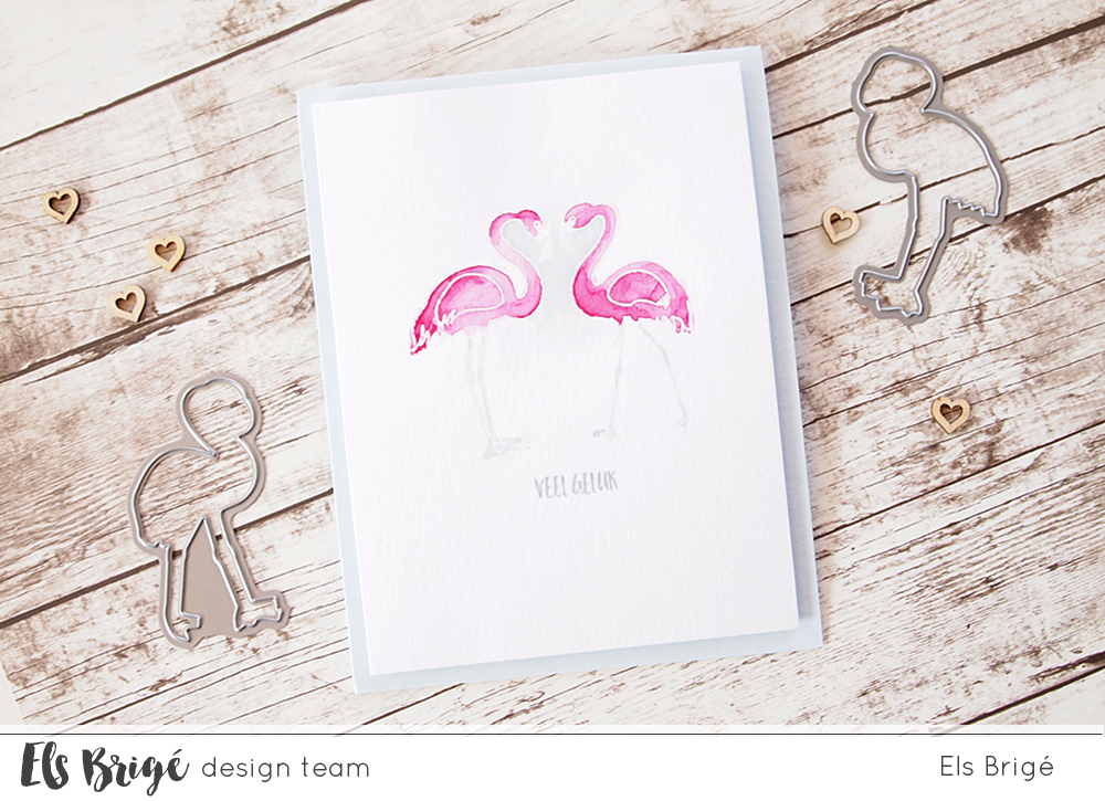 Flamingo {heart} + video | Els