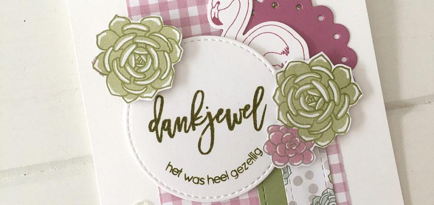Dankjewel/Thank you   Sandra