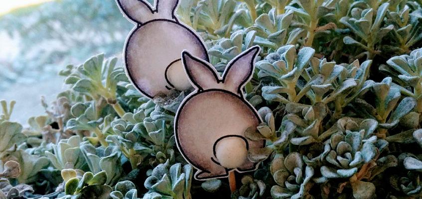 Konijnenstaartjes/Bunny tales | Moon
